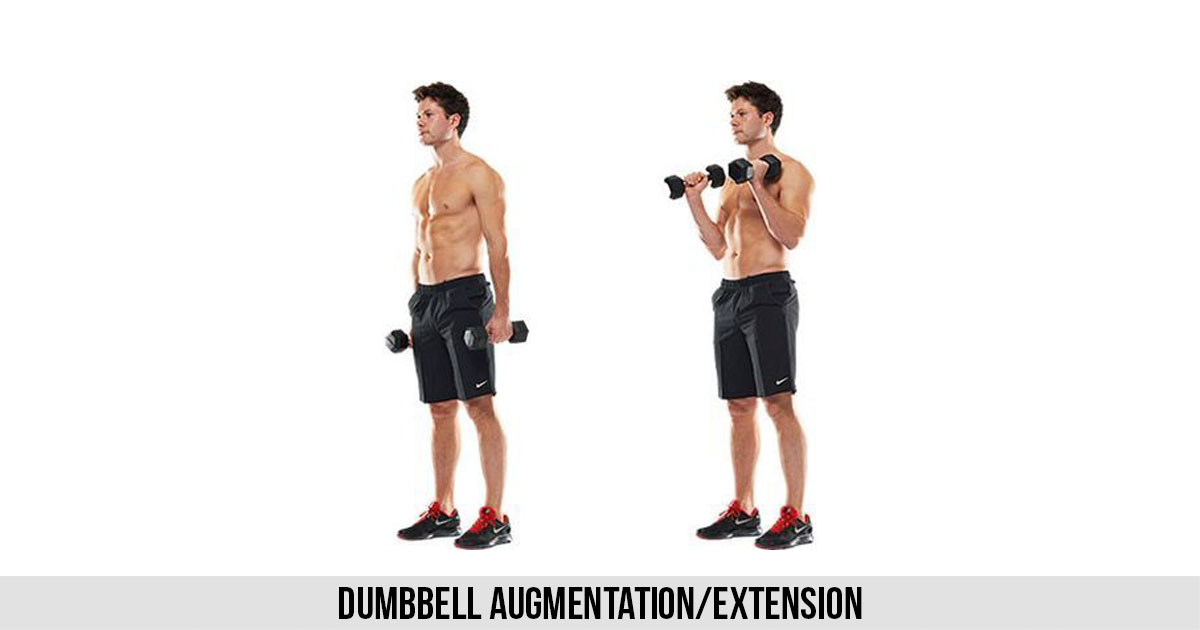 Dumbbell Augmentation/Extension Workout