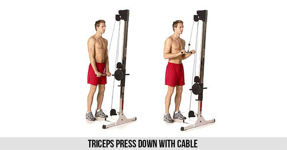 Triceps Press down with Cable