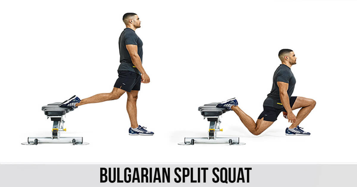Bulgarian Split Squat Exercise