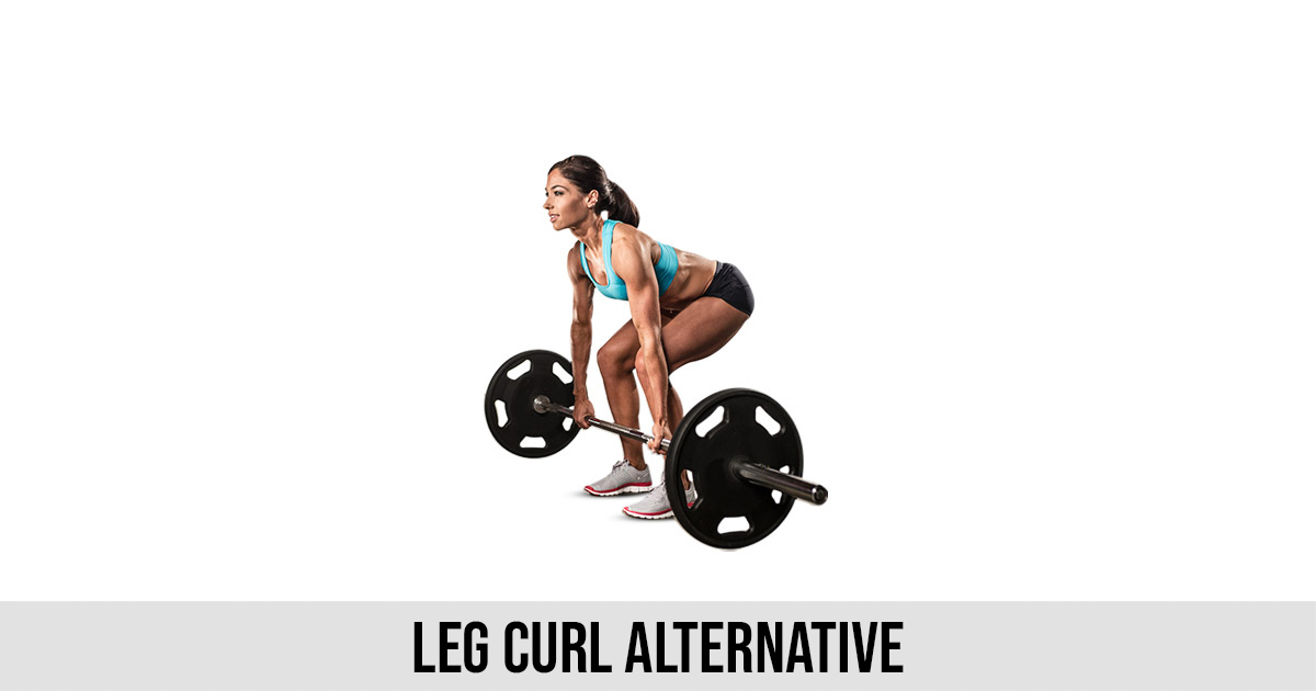 Leg Curl Alternative