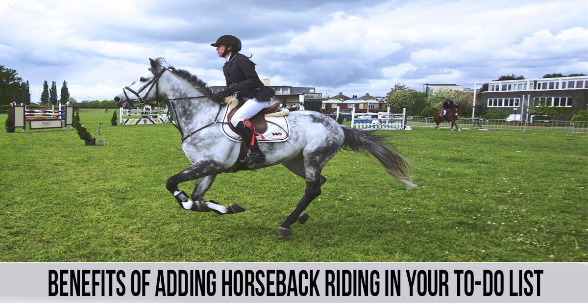 Benefits of Adding Horseback Riding In Your To-Do List