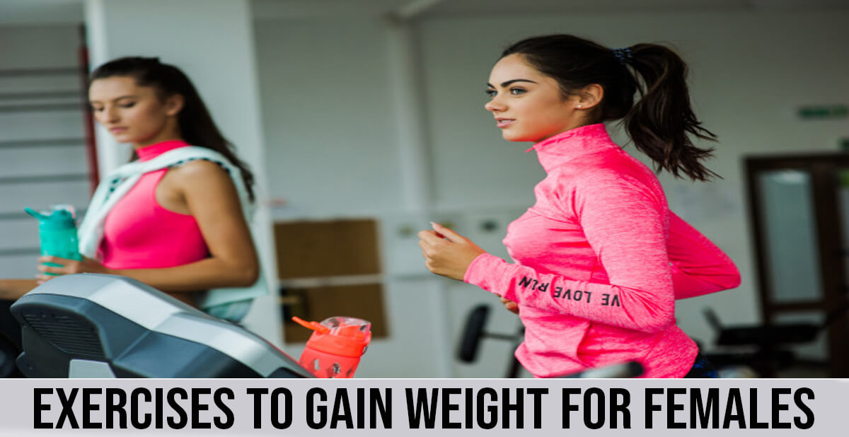 exercises to gain weight for females