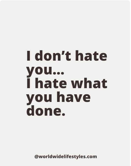 I don't hate you... I hate what you have done.